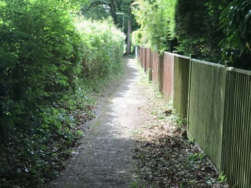 Haslemere Hindhead Footpath