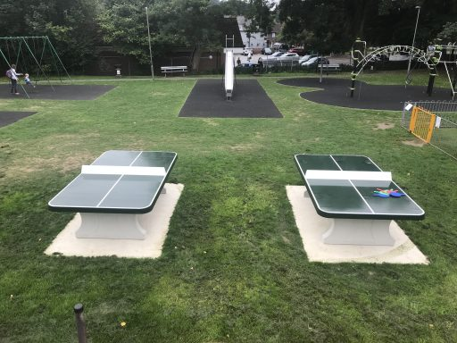 Haslemere - Lion Green Table Tennis Tables