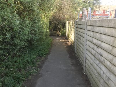 Haslemere Town Meadow Path